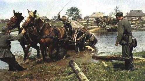 二战德军配备大量骡马东征西讨,为何依然无法满足后勤补给?