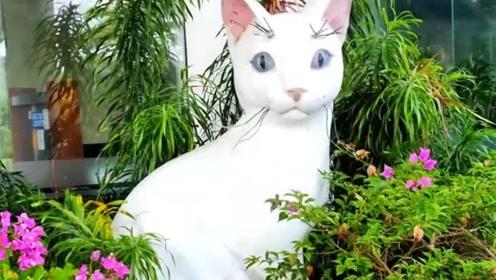 爱猫如命的城市,大街上全都是猫雕像,城市名字也是用猫命名