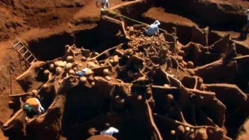 专家往9米深的蚂蚁穴里灌入水泥,挖出来的成品,震惊了所有人
