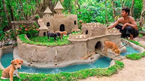 农村小伙就地取材,给流浪狗搭建一个豪华城堡,狗狗们有家了!