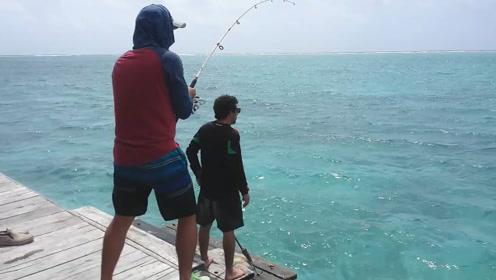 谁说的水清无鱼,这里海水清澈见底有大鱼!