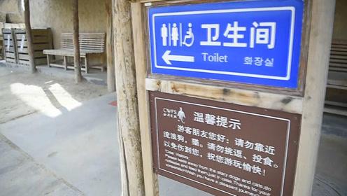 """拉撒≠邋遢,厕所也要""""内外兼修"""""""
