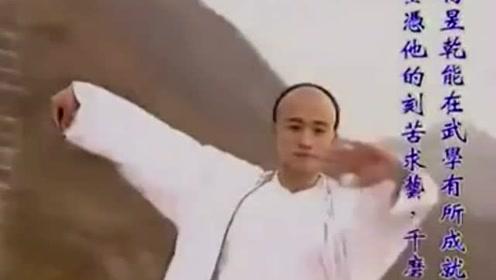说武术太极是花拳绣腿?那是你没看过吴京和赵文卓实力的诠释
