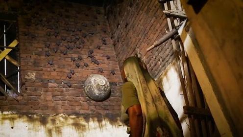 女子和数百只蝙蝠生活20年 在蝙蝠屋里生了个孩子