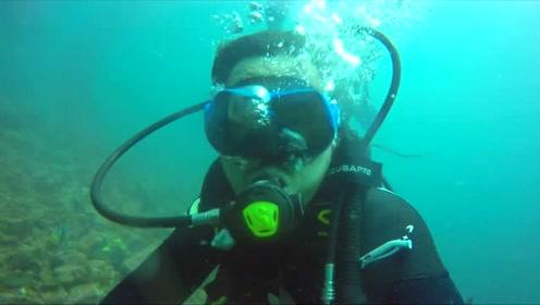 南极学前班——浮潜之旅