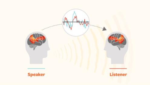 快看,这是你的大脑在与人沟通时的样子