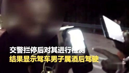 咸宁一酒驾男收费站遇检倒车逃跑被抓 暖心交警安抚其受惊的孩子