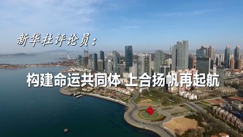 新华社评论员:构建命运共同体,上合扬帆再起航
