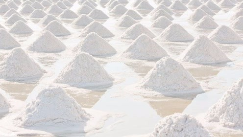 真盐入味尝美味,假盐逍遥害人精,鉴别真假盐的方法教给大家!