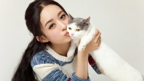 赵丽颖与喵星人同框嘟嘴求亲亲 猫满脸嫌弃表情亮了