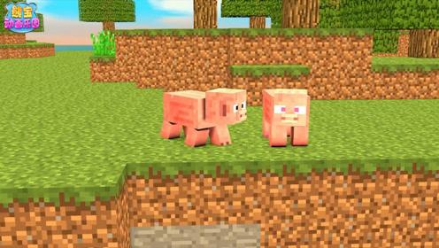 我的世界猪猪的故事 苦力怕连人带猪炸上了天