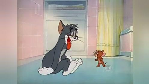 猫和老鼠汤姆喝醉了,把杰瑞当兄弟管吃管喝