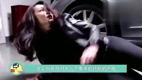 都挺好:苏家3兄妹结局曝光,姚晨收获爱情身家破亿