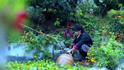 美食李子柒:诗一般的田园生活,香似龙涎仍酽白,味如牛乳更全清!