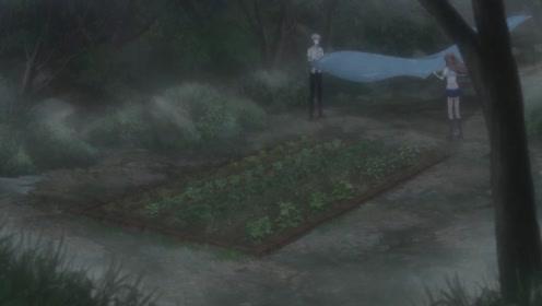 下雨了小透帮助草摩一起把后院的菜地用散布盖上了