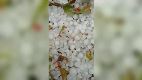 甘肃突降暴雨加冰雹 汤圆大小砸一地