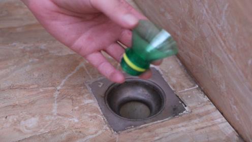 卫生间里放一个塑料瓶,下水道再也不怕堵了,方法简单实用!