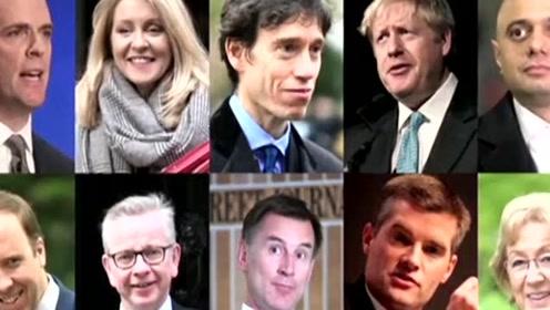 """""""脱欧""""与""""换相"""":这10人中谁将接任特雷莎·梅?"""