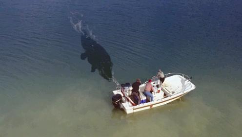 湖中出现怪物,三人坐船用自己当诱饵,结果浮出水面一只大水怪!