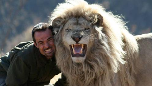 男子十年前捡到幼狮养大,如今再次见面,狮子的举动让人落泪!