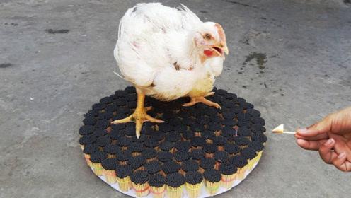 印度小伙用1000根火柴烤鸡,看到成品那一刻,隔壁小孩馋哭了