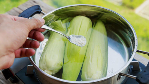 倍儿健康:煮玉米别放糖精 加这两种调料玉米更香甜