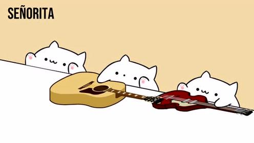 手鼓猫演绎的萌德卡妹新单《Senorita》喵喵版,太可爱了