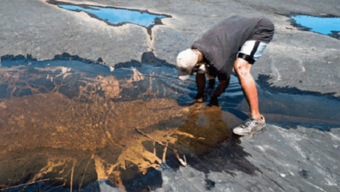 """没有一滴水的湖,它由动物的""""尸骨""""堆成,湖底发现100吨化石"""