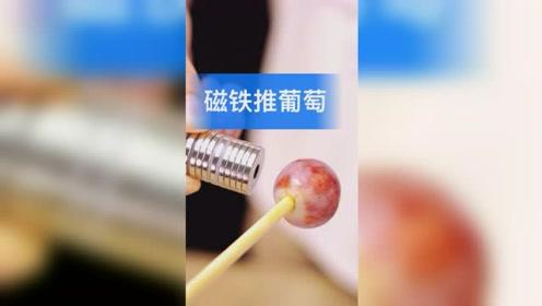 磁铁能对水果产生推力?