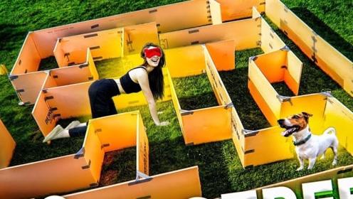 外国美女自己制作迷宫,蒙上眼睛看能不能爬出来,网友:人不如狗