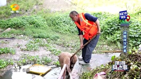 《潇湘身边事》之浏阳河保洁员  湖南电影频道