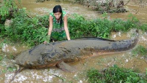 发大水,河里跑上来一条巨型大鱼,筋疲力尽才把它抓住,过瘾