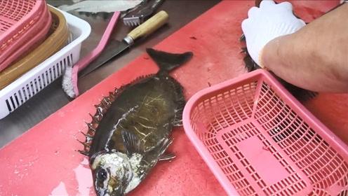 泥猛鱼生鱼片,这种鱼生吃还是头一回!