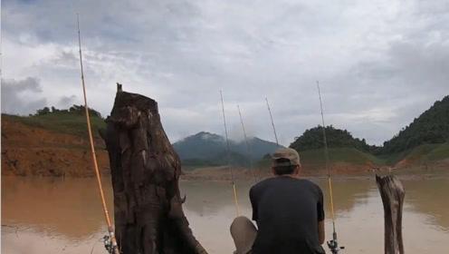 水库边撒下几根钓竿,这个位置鱼获不断罗非鲶鱼不停的咬钓