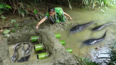美女挖坑用竹筒做陷阱,鲶鱼果不其然见洞就钻,这下一顿野味大餐