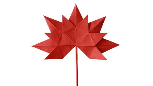 手工折纸简单形象的枫叶,枫叶折纸教程