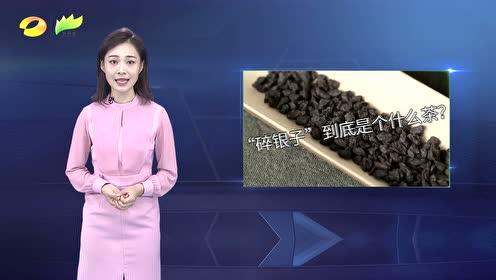 """【洞察】揭开普洱""""碎银子""""的神秘面纱"""