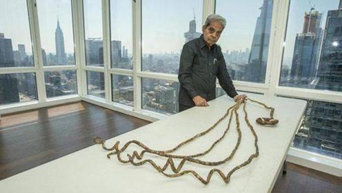 印度老人留了66年的指甲,打破吉尼斯纪录,狠心剪掉后意外发生