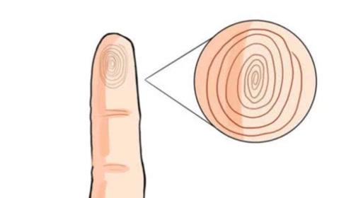 小拇指指纹暗含人生运势,前者财运堪忧,后者财运却不请自来!