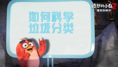"""《愤怒的小鸟2》""""垃圾攻坚战""""宣传片"""