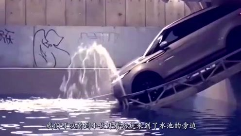 遇到大水坑怎么办?路虎司机一言不合就冲了下去,众人看傻眼!