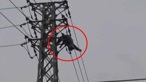 男子爬高压塔摘马蜂窝被电击 半身悬吊空中摇摇欲坠