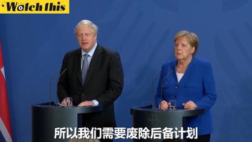 鲍里斯访德谈脱欧:我们要达成协议 废除爱尔兰后备计划