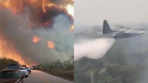大力神运输机参与扑救!巴西总统授权军队扑救亚马孙雨林大火