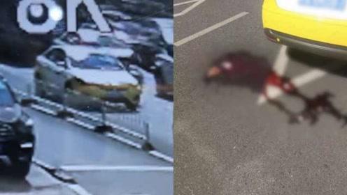 出租车路口停车,的哥吐出一摊血,同行见了掉头就给送医院