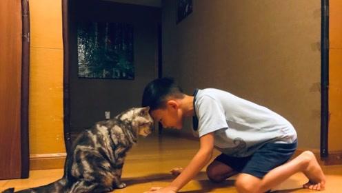 姚晨晒儿子与猫咪合照,千万豪宅内拿胶带贴防撞墙,超接地气!