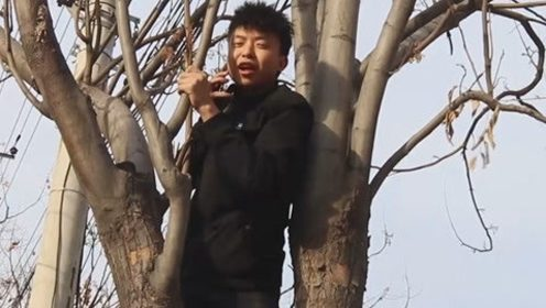 男子遛弯,被人追着打,爬到树上不敢下来,结果大块人心