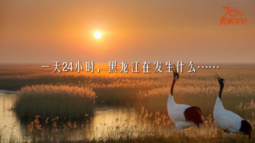 黑龙江24小时