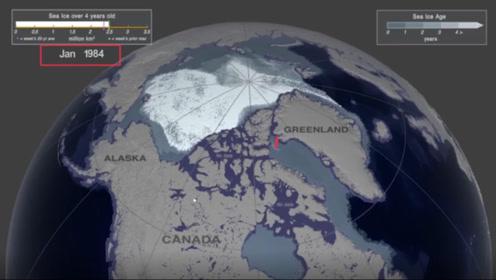 NASA动画展示北极海冰消融:2050年北极海冰可能完全消失