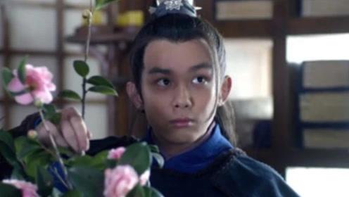 琅琊榜:梅长苏逝世后,飞流到底活了多久?从这点可以看出!
